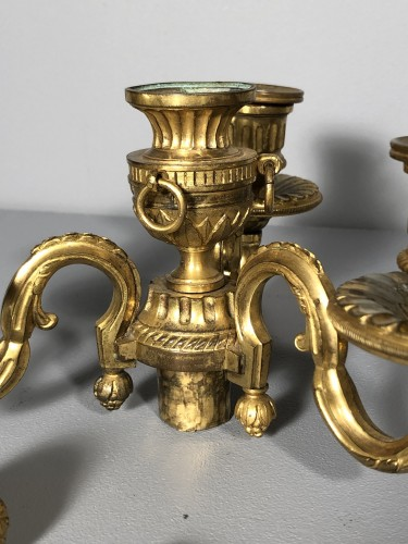 Pair of neo-classical bronze candelabra circa 1780 - Lighting Style Louis XVI