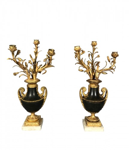 Pair of candelabras with the lys flowers, Paris Louis XVI period