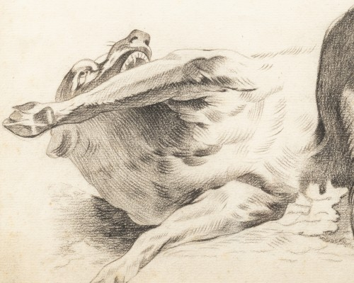 Dog rolling on its back - circle of Alexandre-François Desportes - Paintings & Drawings Style