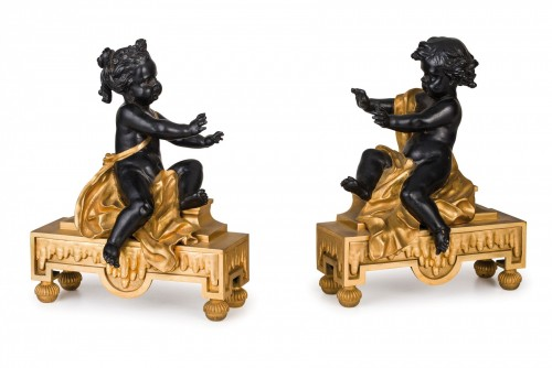 19th Century, Pair of French gilt and dark patina bronze fireplace chenets  - Decorative Objects Style