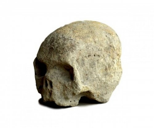 Stone carved Skull.16th century