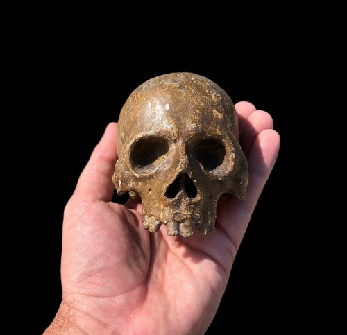 Curiosities  - A Memento Mori skull.Germany.17th century.