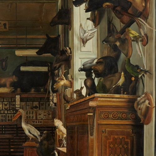 The workshop of a Taxidermist - J. Convey  - Paintings & Drawings Style