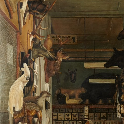 Paintings & Drawings  - The workshop of a Taxidermist - J. Convey