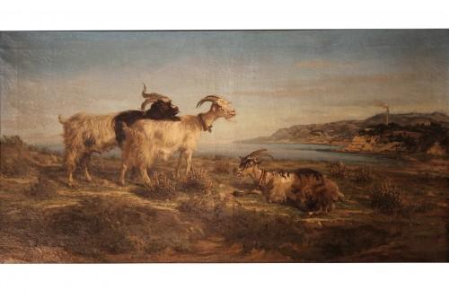 Provençal school. SIMON François. The Rove goats.