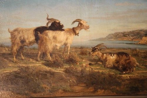 Provençal school. SIMON François. The Rove goats. - Paintings & Drawings Style