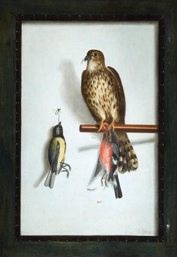 Cornelis Biltius (1653 - 1685) - Trompe l'oeil with falcon