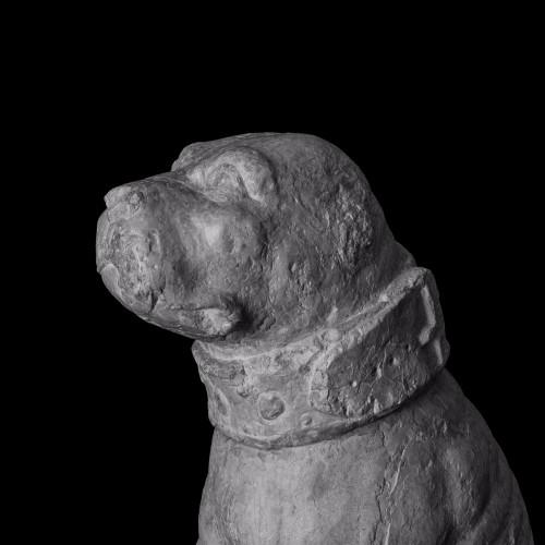 Sculpture  - Rare pair of sitting mastiff dogs - Venice, 15th - 16th century