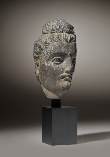 Ancient Art  - Gandhara Head of Buddha