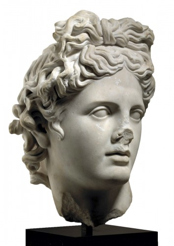 Head of the Apollo Belvedere