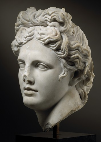 Sculpture  - Head of the Apollo Belvedere