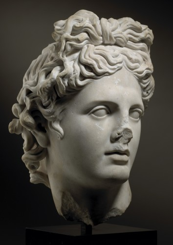 Head of the Apollo Belvedere -