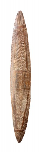 Aboriginal New South Wales Narrow Parrying Shield