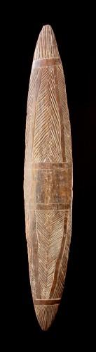 Tribal Art  - Aboriginal New South Wales Narrow Parrying Shield
