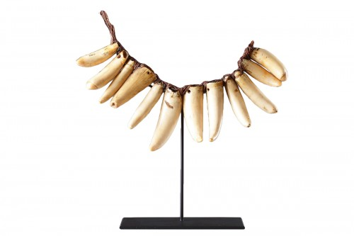 Fijian Sperm Whale Tooth Necklace 'Vuasagale'
