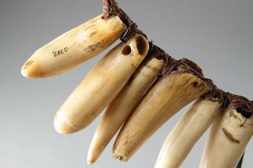 Fijian Sperm Whale Tooth Necklace 'Vuasagale' -
