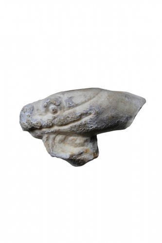 Marble head of a Snake, Roman