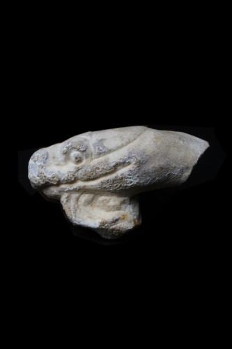 Ancient Art  - Marble head of a Snake, Roman