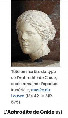 - Cnide Aphrodite terra cotta antique head