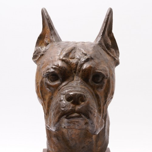 Sculpture  - Bronze Boxer Head -  Pierre Blanc (1902-1986)
