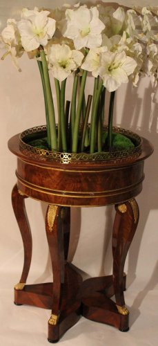 French Restauration period mahogany jardiniere