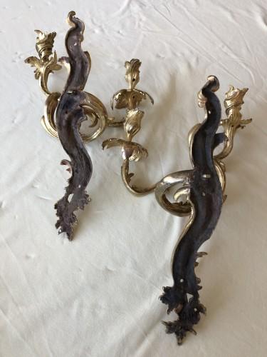 Antiquités - Pair of Louis XV period sconces