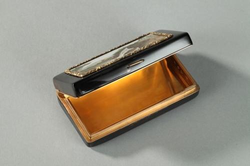 Objects of Vertu  - GOLD-LINED, TORTOISESHELL MICROMOSAIC SNUFF BOX.Empire Period.