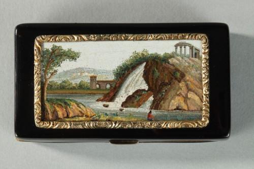 19th century - GOLD-LINED, TORTOISESHELL MICROMOSAIC SNUFF BOX.Empire Period.