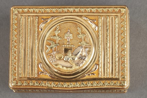 Objects of Vertu  - 18th century Gold box