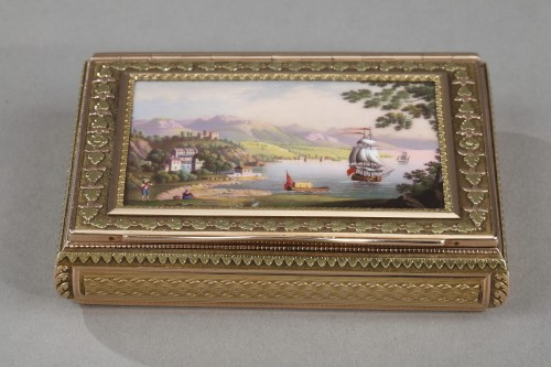 Objects of Vertu  - A 19th Century gold and enamelled snuff-box