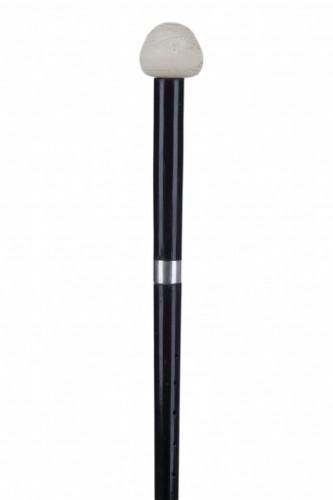 Oboe cane