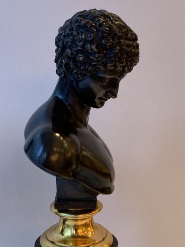 A pair of bronze busts after the antique - Venus and Antinous - Sculpture Style