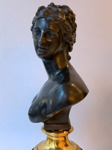 Sculpture  - A pair of bronze busts after the antique - Venus and Antinous
