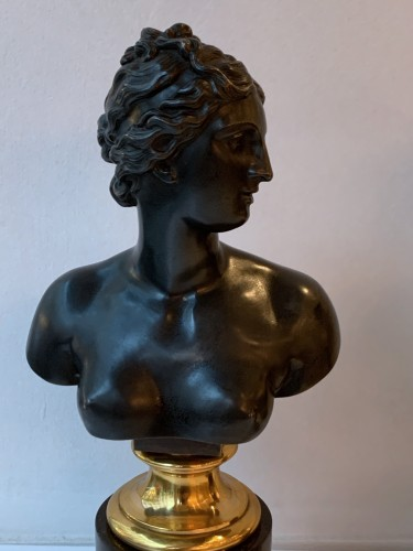 19th century - A pair of bronze busts after the antique - Venus and Antinous