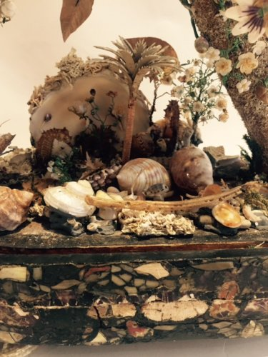 Composition shells, hippocampus and shell flowers under globe 19th century - Curiosities Style