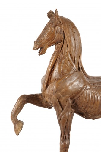 """Horse """"écorché"""" in terracotta 18th century - Sculpture Style"""