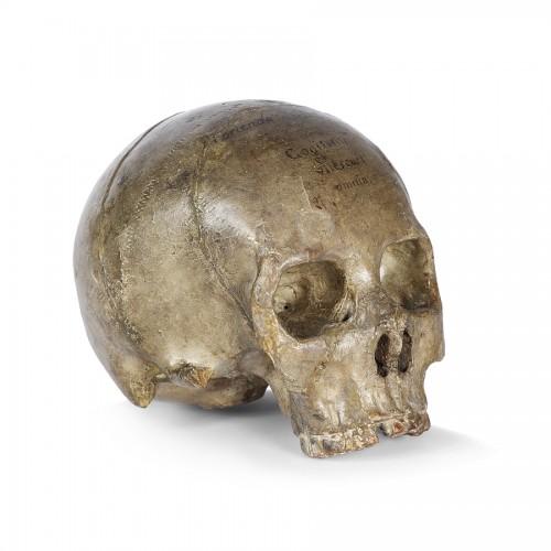 Terracotta skull 17th century