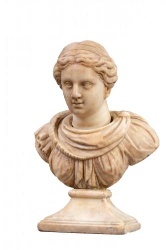 Marble renaissance bust