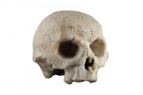 Alabaster skull, 16th century