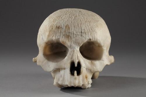 Curiosities  - Alabaster skull, 16th century