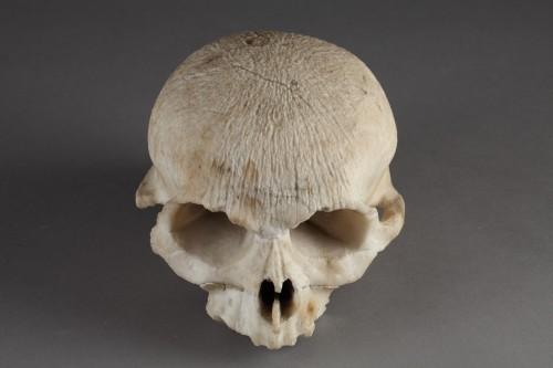 - Alabaster skull, 16th century