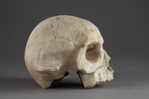 Alabaster skull, 16th century -