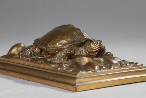 Sculpture  - Turtle - Antoine-Louis BARYE (1796-1875)