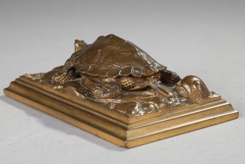 19th century - Turtle - Antoine-Louis BARYE (1796-1875)