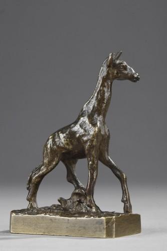 Giraffe - Christophe FRATIN (1801-1864) -