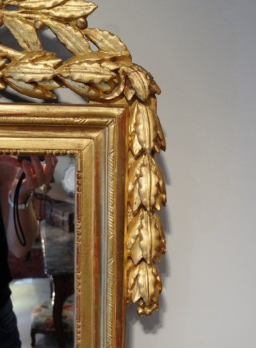 Louis XVI Mirror in gilded wood with attributes of gardener 18th century -