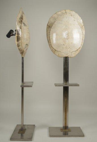 pair of lamps by Romeo Rega -