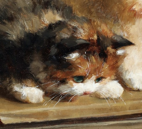Paintings & Drawings  - Playfull kittens - Charles van den Eycken (1859-1923)