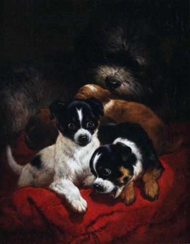 Playfull youth  - Henriette Ronner (1821-1909)