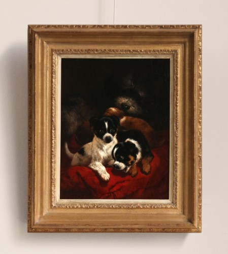 Paintings & Drawings  - Playfull youth  - Henriette Ronner (1821-1909)